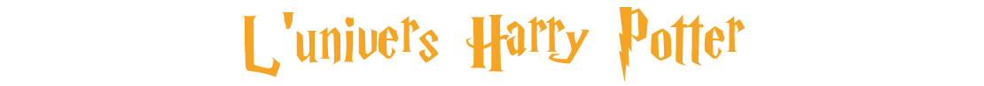 L'univers fantastique Harry Potter sur momox-shop