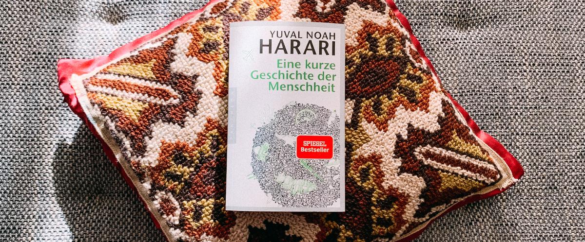 Rezension des Buches Eine kurze Geschichte der Menschheit