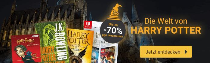 Zur Welt von Harry Potter